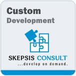 Custom Programming Services & Solutions.